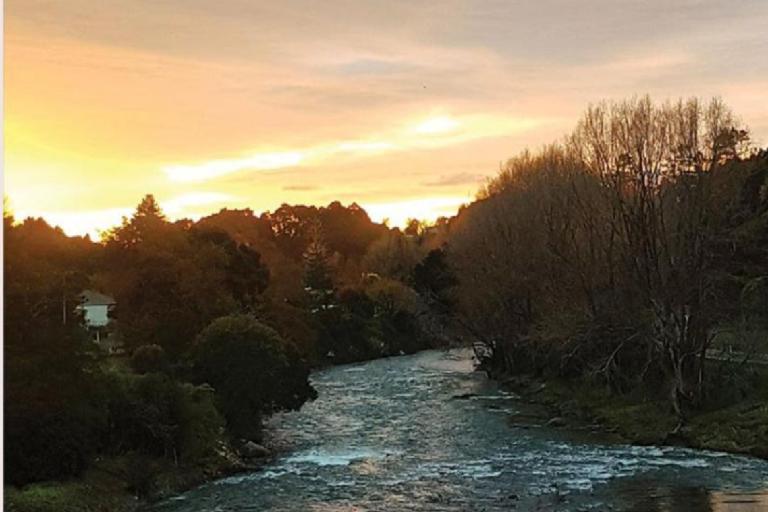 Riverside Hauraki Rail Trail