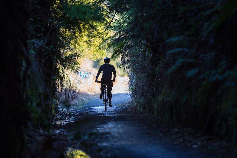 Roadtrippers: Hauraki Rail Trail